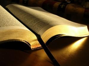 Romans 4, Scripture Records Salvation Has Always Been Through Faith